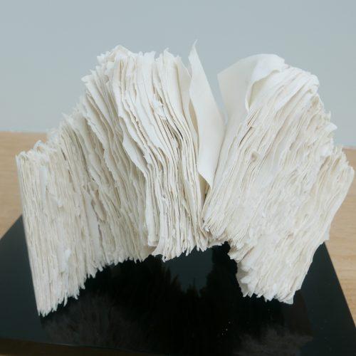 Sara Dodd Murmuration II at Joanna Bird Contemporary Collections