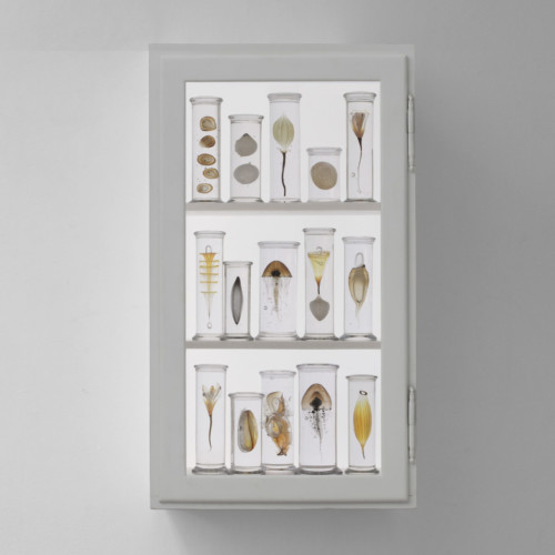 New-medicine-2017 by Steffen Dam at Joanna Bird Contemporary Collections